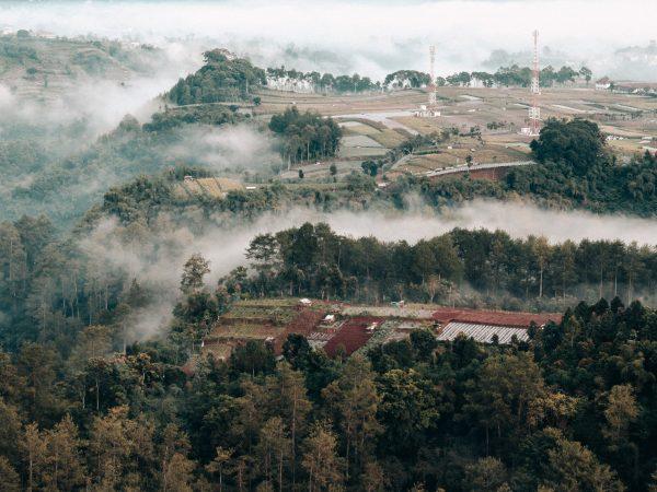 INDONESIA – BANDUNG  4D/3N  – Cisarua Safari Park, Puncak Highland,  Bogor City, Lembang Town and Udjo's House of Angklung